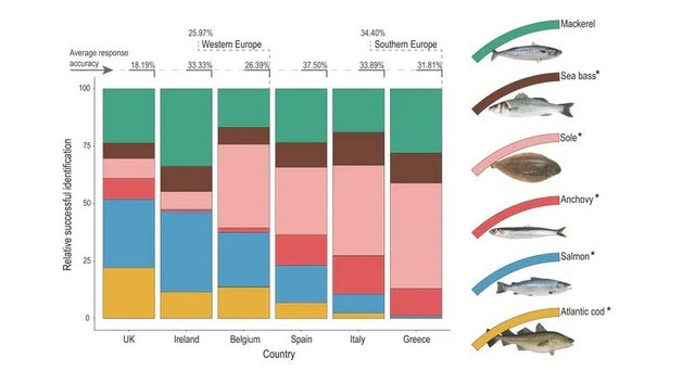 Seafood-most-Europeans-struggle-to-identify-the-fish-they-eat.jpg