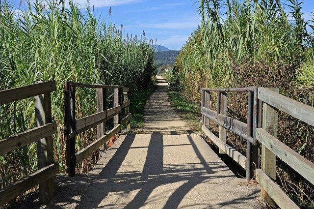 Ruta_del_Carrilet Olot to Girona photo by Peremagria, CC BY-SA 3.0, via Wikimedia Commons.JPG
