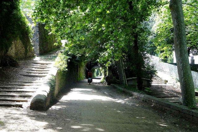 Ruta_del_Carrilet-near-Olot-photo-by-Cherubino,-CC-BY-SA-3.0-,-via-Wikimedia-Commons.jpg