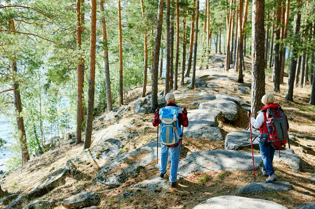retired-couple-hiking-together-in-the-forest.jpg