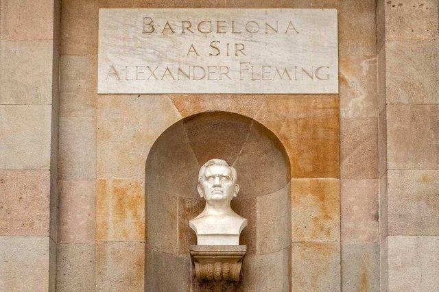 bust of Alexander Fleming in Barcleona.jpg