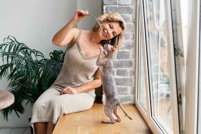 woman-playing-with-cat.jpg