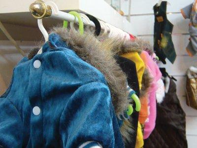 dog-jackets-home.jpg