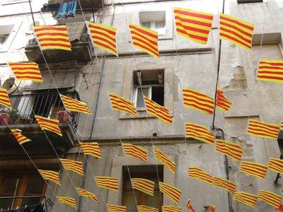 C Baluard flags home