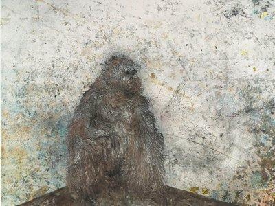Barcelo gorilla home