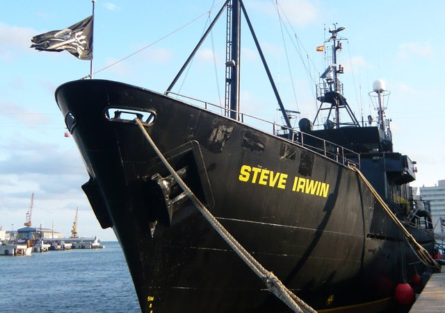Steve Irwin, Sea Shepherd