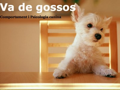 Va de Gossos (blogging)