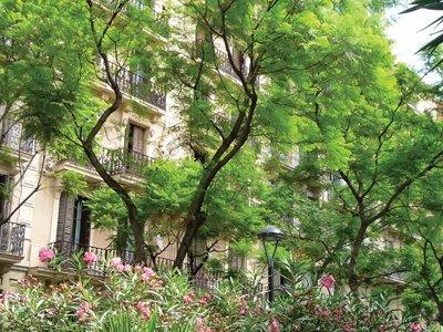 street-image-floral.home.jpg