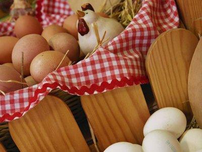 eggs home