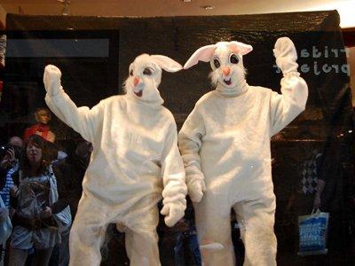 DIY Culture - Bunny Me!