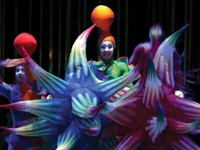 Cirque du Soleil, Varekai Home