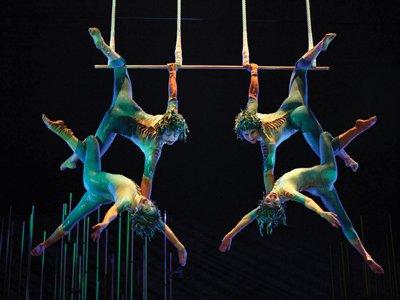 Cirque du Soleil trapeze home