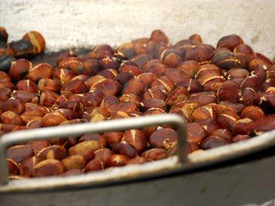 Chestnut Fest Home