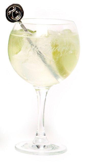 gin-tonic.jpg