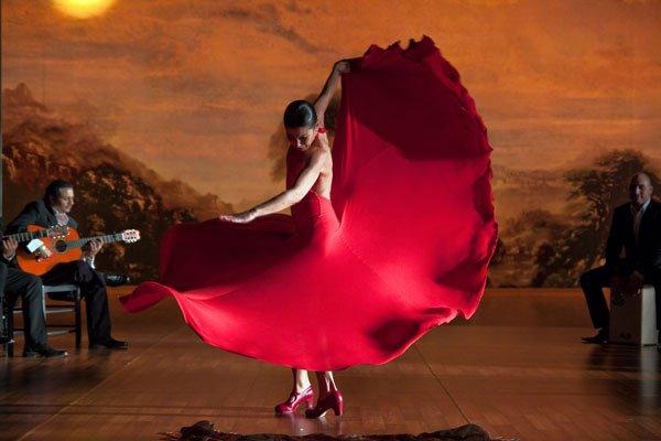 Flamenco-Flamenco.jpg