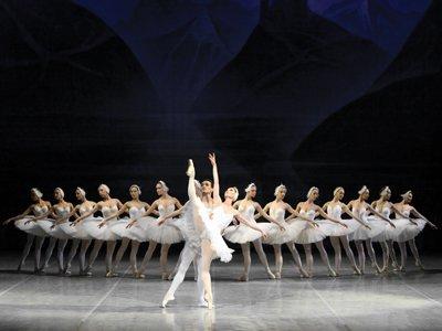 Swan Lake Ballet Estatal Ruso de Rosotov home