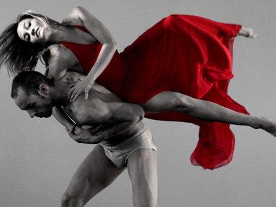 Dansat 2011