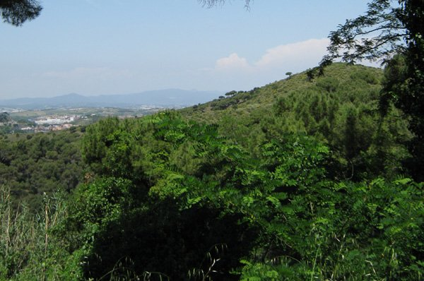 Serralada de Marina Natural Park